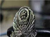 重慶市公安局江北區分局刑事警察支隊